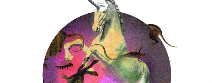 el_unicornio_y_el_delirio_angueliki_korre